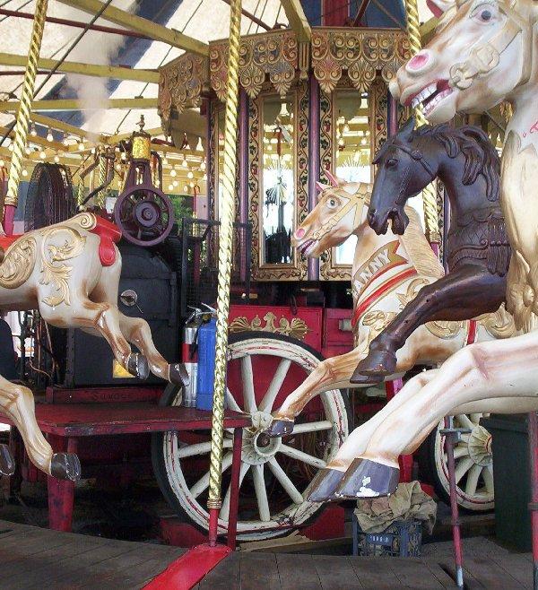 image carousel horses