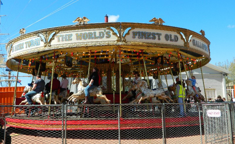 Daily Prompt: The Gallopers