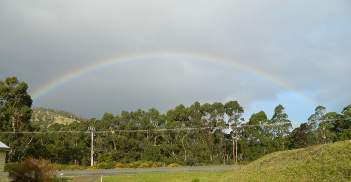 The rainbow could be seen across the road from my house.