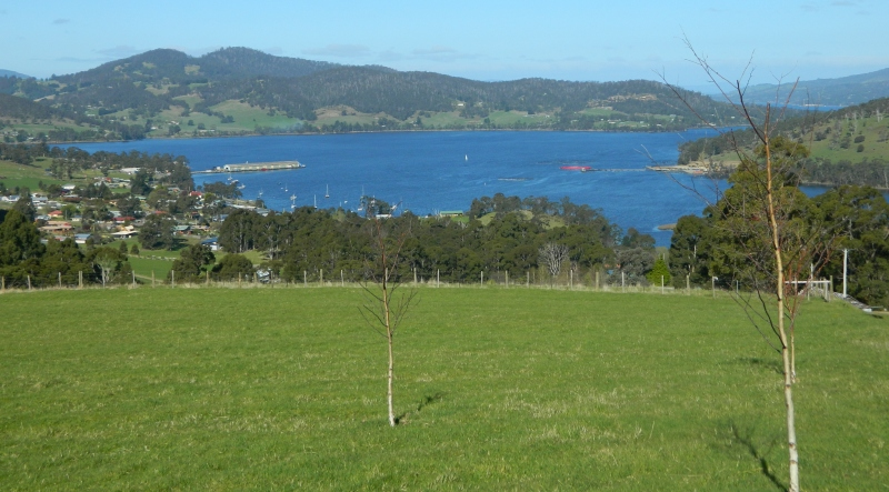 The view of the Huon River from halfway up Percy St, Port Huon