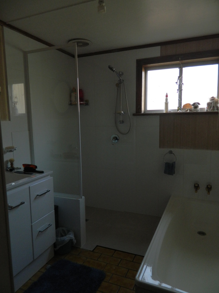 Our bathroom with new shower area.
