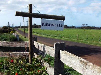 country road near Burnie, Tasmania