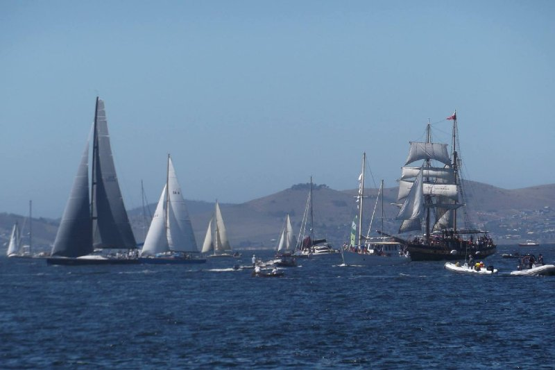 Parade of Sail. Photo by Allyson Clark