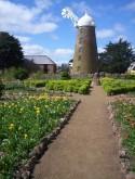 Parterre Garden, Callington Mill, Oatlands.