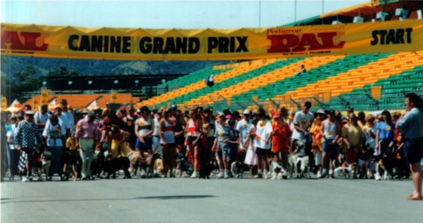 The Dogs Grand Prix.
