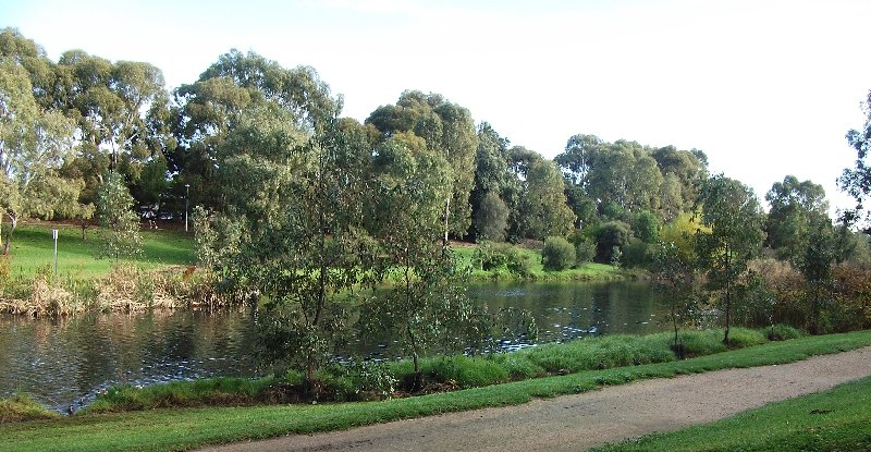 The River Torrens Linear Park at Lockley's , South Australia