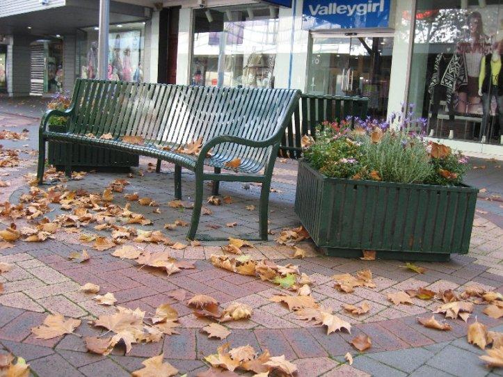 Leaf litter in Elizabeth St Mall in Hobart