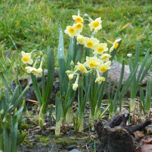 Spring is just around the corner.