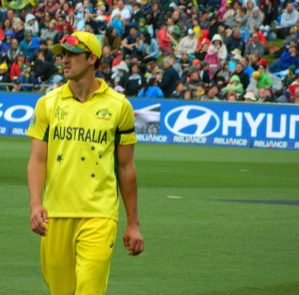 Mitchell Starc - Australian Fast Bowler - Bellerive Oval March 2015