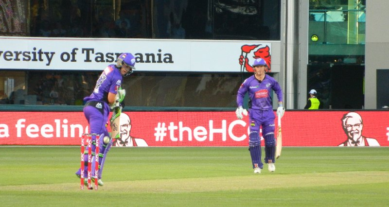 The Hobart Hurricanes batting