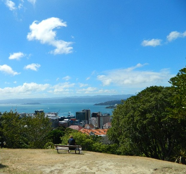 View from the Botanical Gardens, Wellington , New Zealand