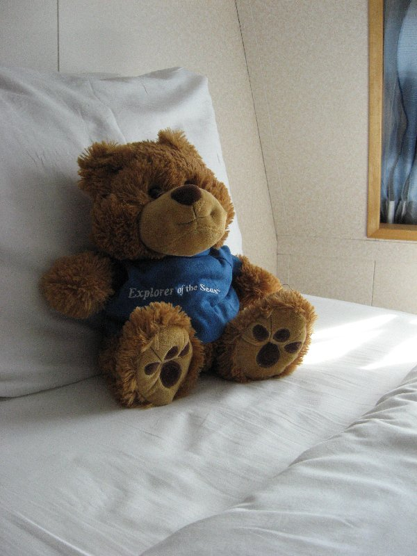 Explorer of the Seas Teddy Bear.