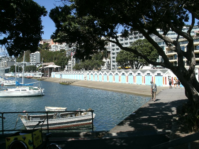 A perfect day in Wellington. Photo N. Bovill