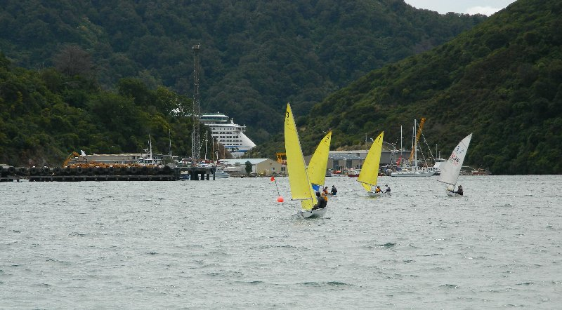 Sailing in Picton Harbour