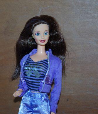 Rachel - Purple and Black Closet