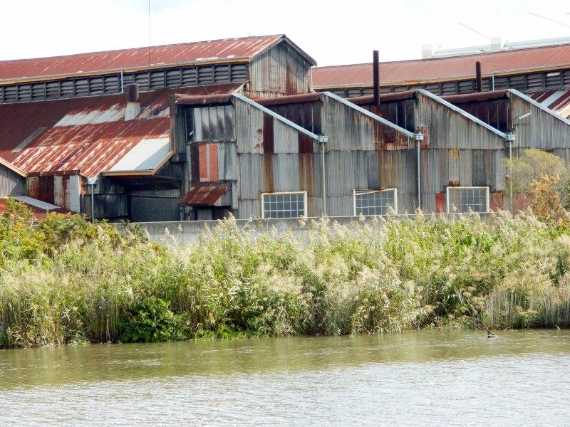 Rusty roofs - Launceston