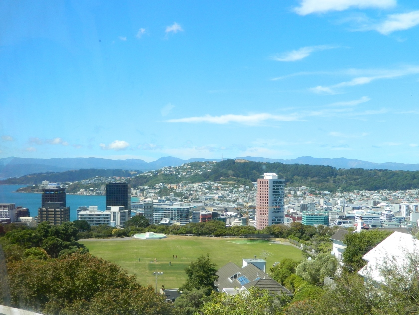 View of Wellington NZ