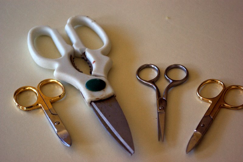 A few pairs of scissors.