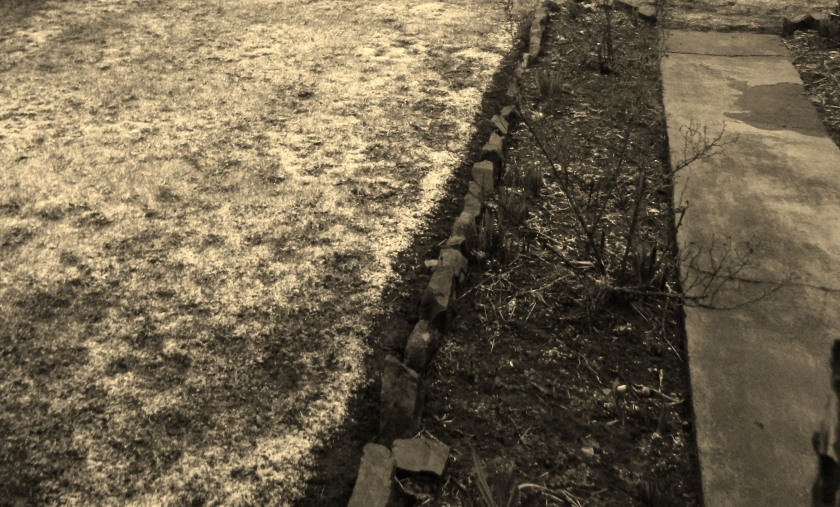 snow covered grass, soil and a concrete path.