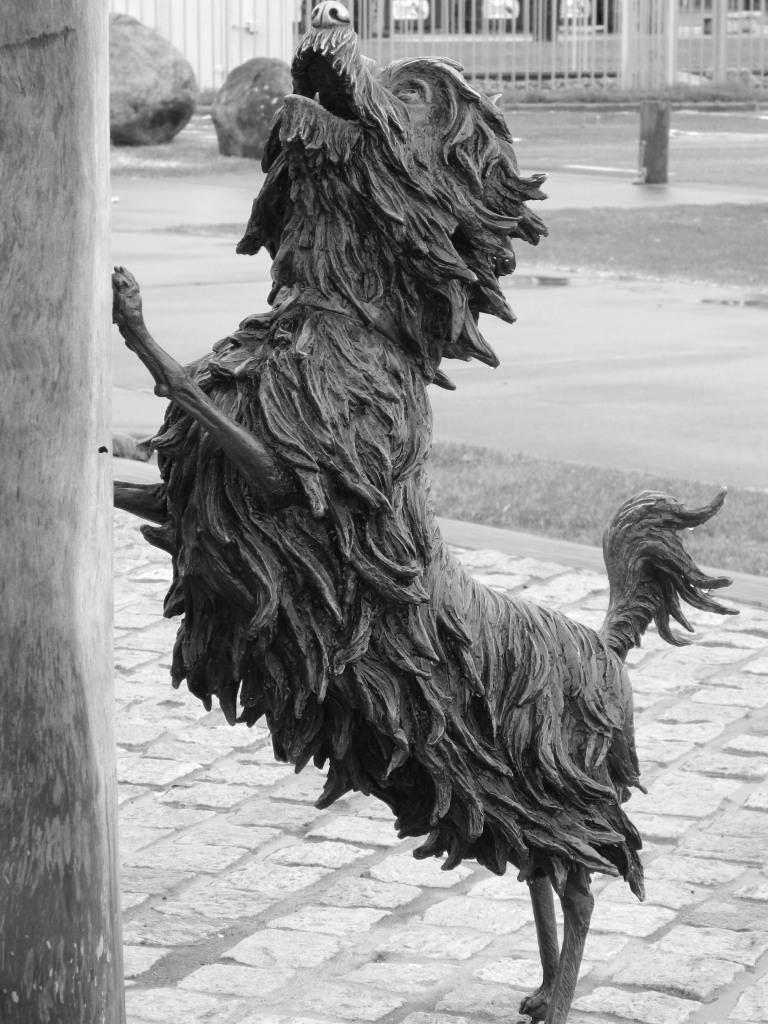 Hairy Maclairy sculpture in Tauranga, New Zealand