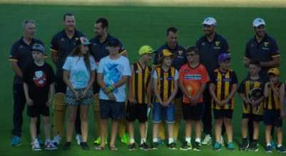 Damien Fleming and Hawthorn