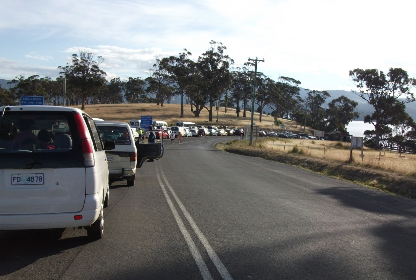 Traffic has slowed to a crawl waiting to board the Bruny Island Ferry.