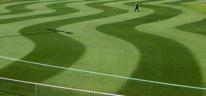 RDP: Grass
