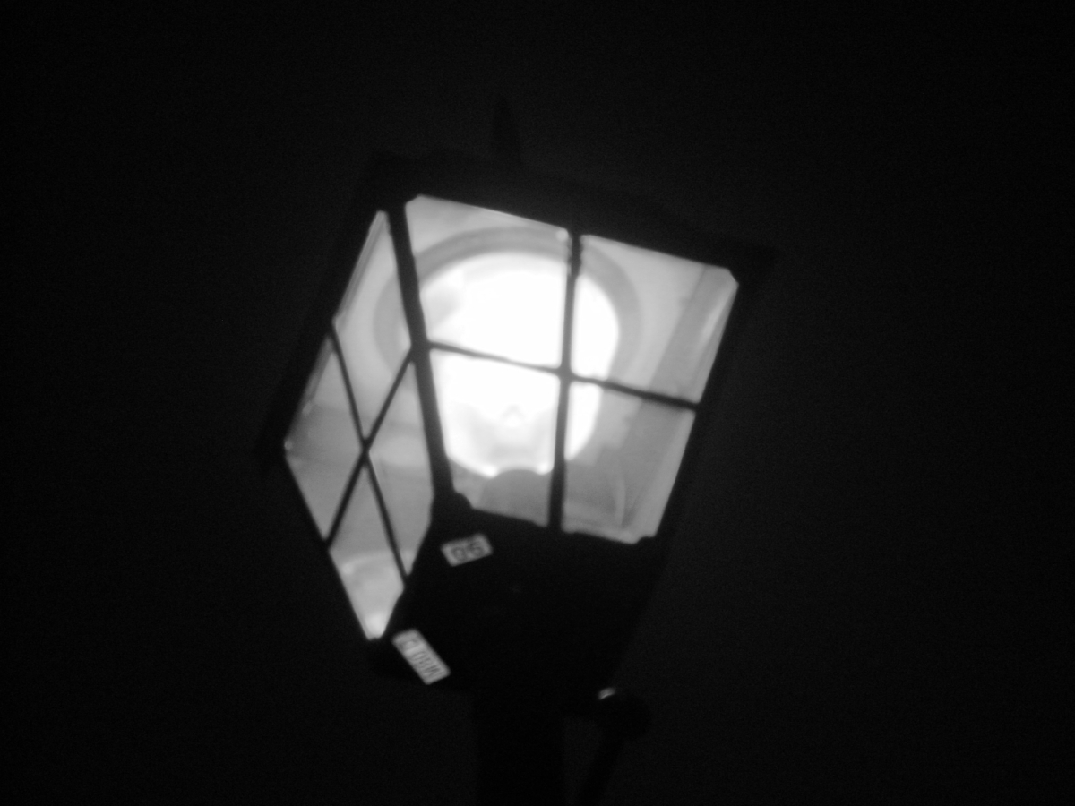 Cee's Black & White Photo Challenge : Lights
