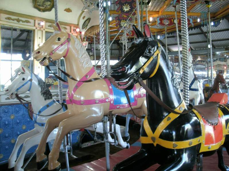 Semaphore Carousel horses