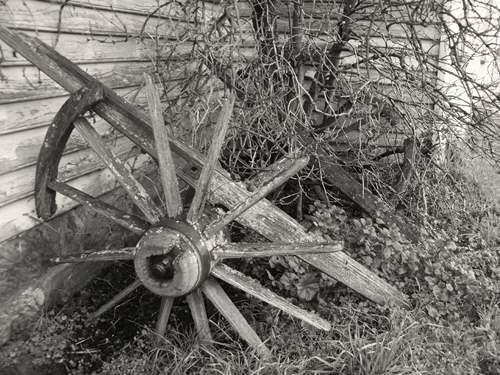 Very old and broken cart wheels