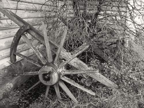 Very old and broken cart wheels