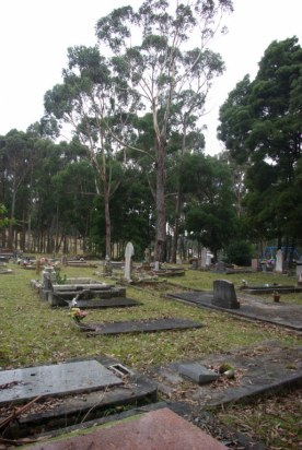 The Catholic Cemetery Geeveston. You can see the play equipment in the school playground from here.