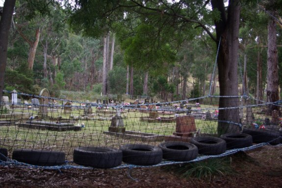 The cemetery as seen from the school playground.