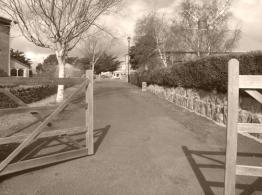 Pedestrian walkway leading to the Callington Mill Oatlands