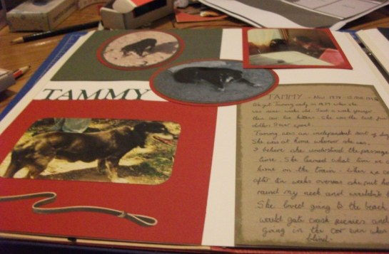 Scrapbook page about Tammy