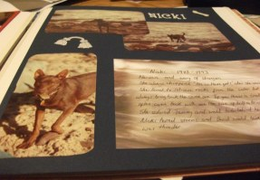 Scrapbook page about Nicki