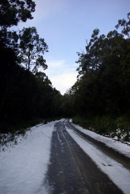 Snow on the verges.