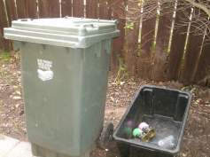The garbage bin in my yard.