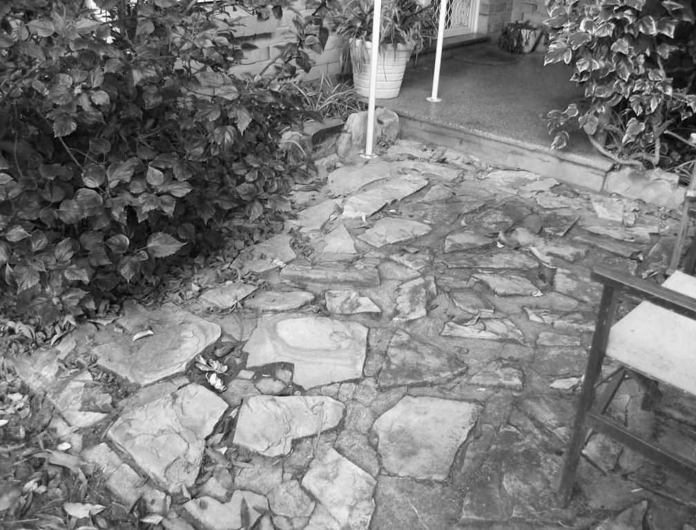 Cee's Black & White Photo Challenge: Bricks orStones