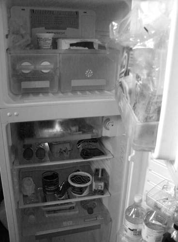 The fridge was just about empty because I haven't done my shopping yet. I bought a few things today to keep me going but not much.