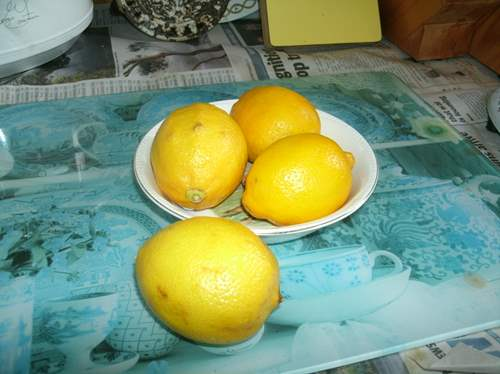 Lemons freshly bought from Coles