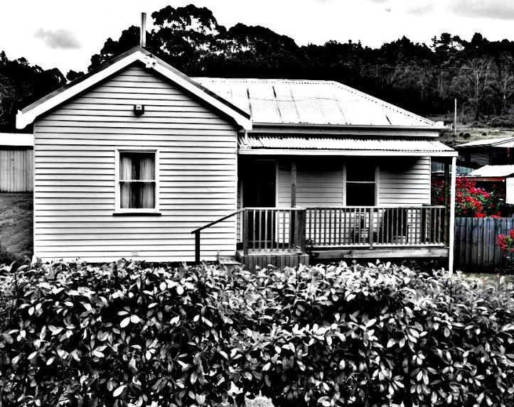 House edited with Picasa's focal B&W and HDR filters
