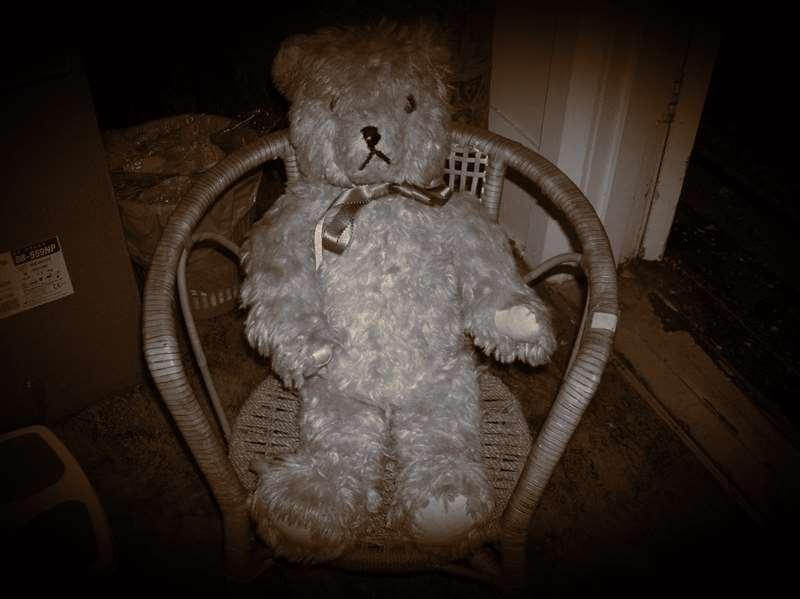 Teddy on Cane Chair
