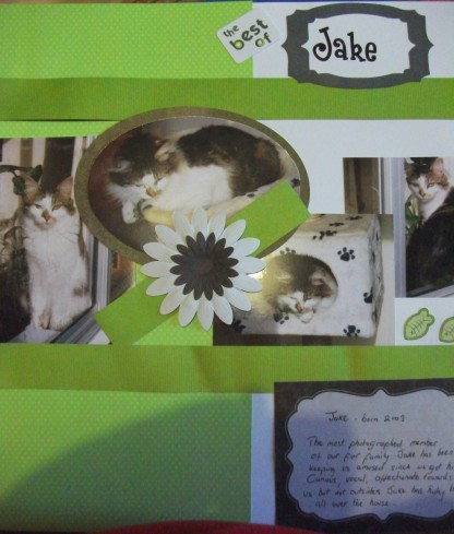 Scrapbook page about our cat Jake.
