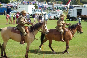 Two of the horses in the riding demonstration.