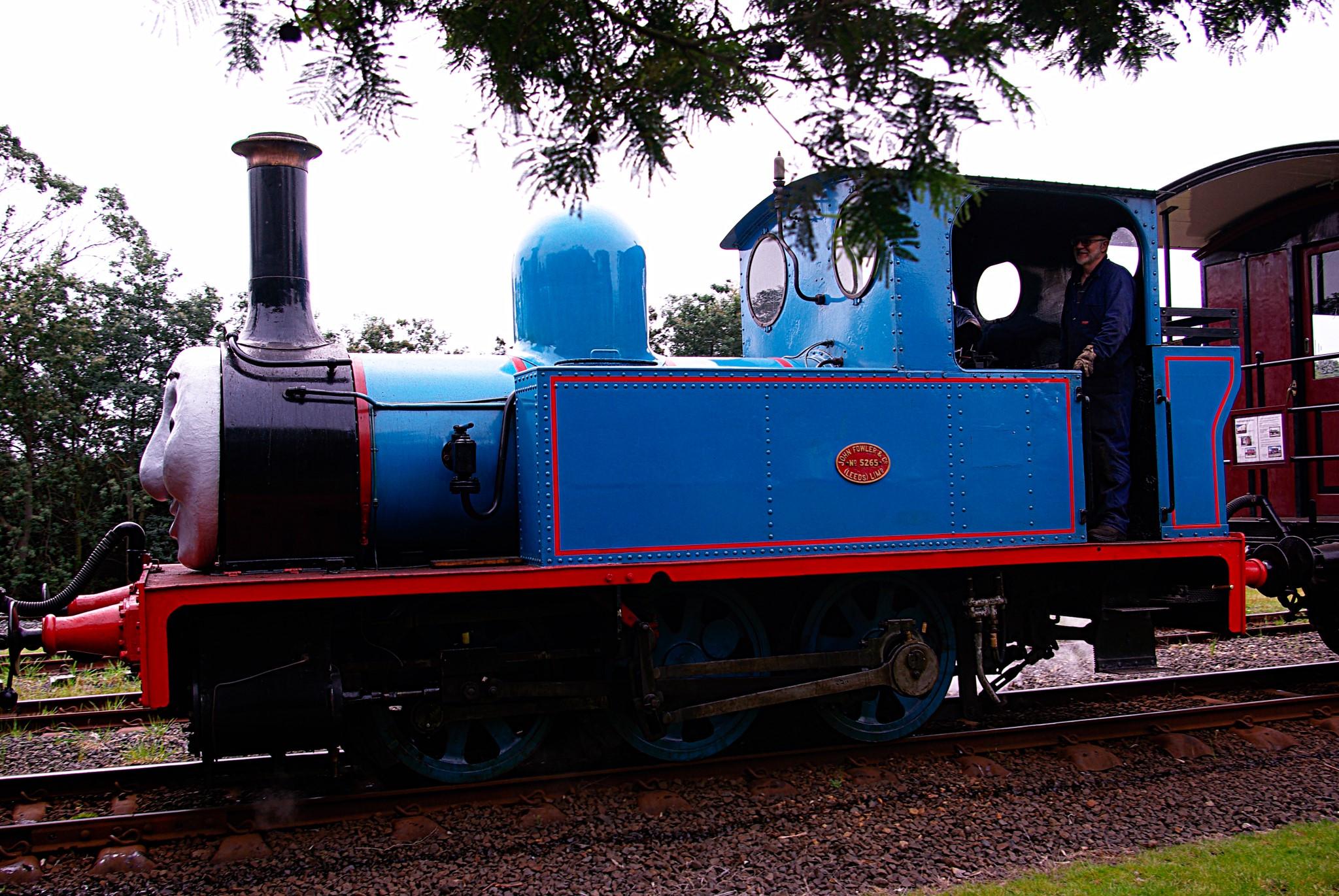Fowler 060T Don River Railway, Tasmania